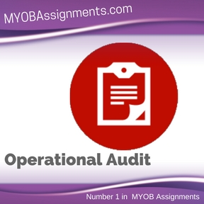 Operational Audit Assignment Help