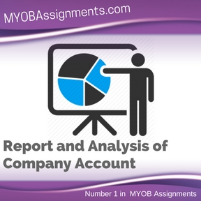 Report and Analysis of Company Account Assignment Help