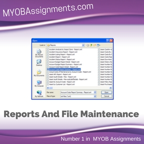 Reports And File Maintenance Assignment Help
