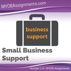 Small Business Support Assignment Help